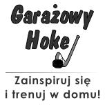Garażowy Hokej